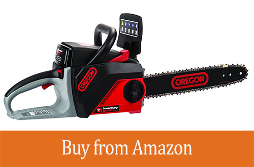 OREGON Cordless 40 Volt MAX CS250-A6 Saw Kit with 4.0 Ah Battery Pack Review